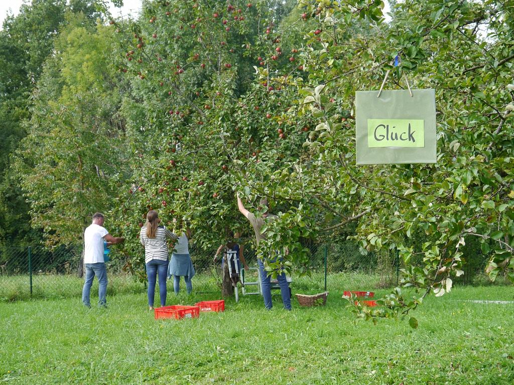 Fotoserie Einkaufstaschen im Obstgarten